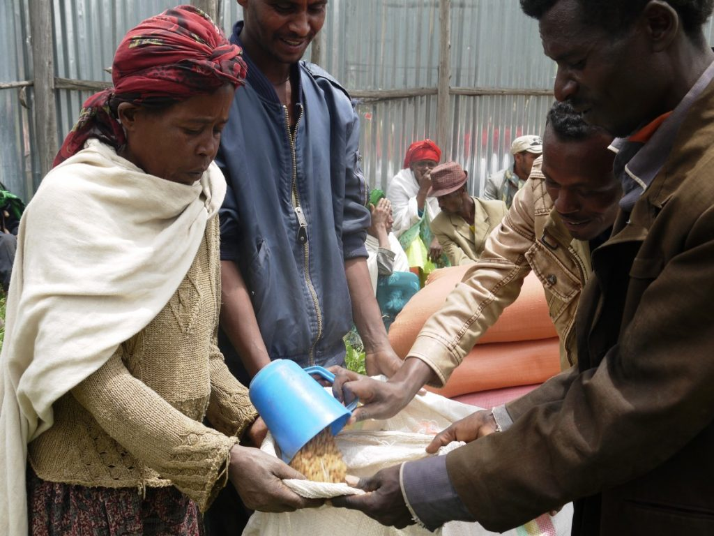 Bright Future Ethiopia (BFE)